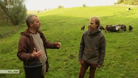 Bisher stammte der Verdienst der Schäfer v.a. aus Beiträgen für die Grünlandpflege. Die Wolle wurde vernichtet. Copyright: NDR.