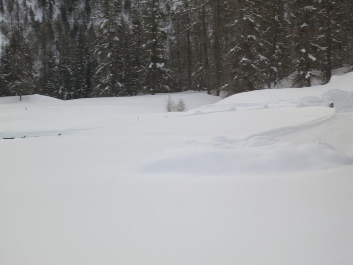 Schneeräumung für Langzeitmisthaufen in Cinuos-chel-Brail im Engadin (Jahr für Jahr). Der Mist wurde am 7.2.19 hier deponiert. Copyright: Céline.
