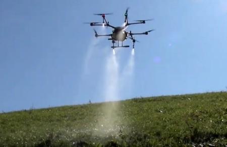 Einsatz einer Drohne am Steilhang zum Versprühen eines selektiven Herbizids gegen die Blacke. Copyright: Heinrich Hebeisen.
