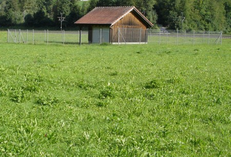 Nur in der Grundwasserschutzzone S1 dürfen keine Pestizide eingesetzt werden. Diese misst lediglich 10 m.