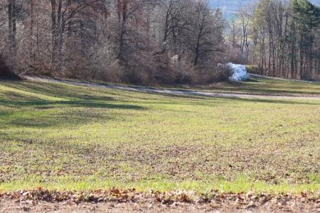 Jahr für Jahr lagern hier Siloballen. Am 15.1.20 sah das Siloballenlager, vom Aussichtsbänkli aus gesichtet, so aus.