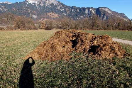 Misthaufen in der Rohan-Schanze bei Landquart, im Hintergrund Malans.