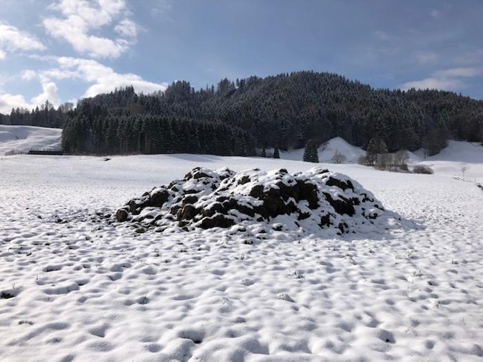 Diesen Misthaufen bei Einsiedeln SZ hatte Marco schon am 12.1.20 fotografiert und jetzt am 7.3.20 wieder. Copyright: Marco.