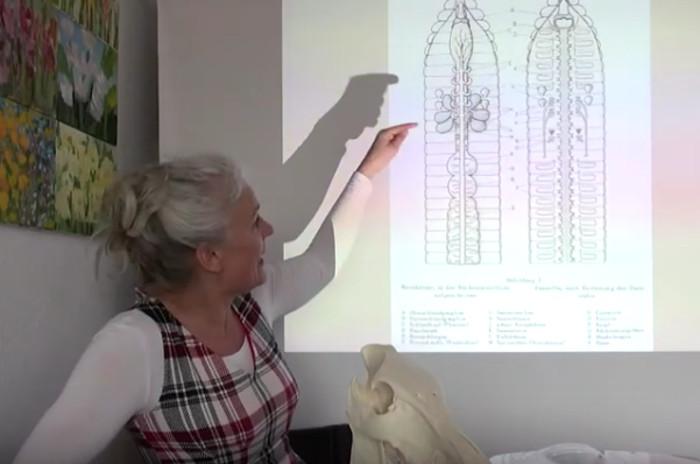 Barbara Geiger stellt den Regenwurm vor. Copyright: Fräulein Brehms Tierleben.