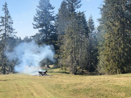 Alle Jahre wieder: Rauchende Holzstapel im Jura. Manchmal werden Baumstämme angezündet; als dann einmal Schnee kam, qualmte es einige Wochen lang. Copyright: Hans T.