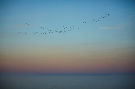 """Die Bewohner Sibiriens nennen den Baikalsee """"Die Quelle der Welt"""", denn sie sind davon überzeugt, dass hier die Welt anfängt. Für sie ist der See auch """"Das heilige Meer"""". 20% des globalen Süsswassers ruhen in diesem Süsswassermeer. Copyright: Maurice Haas. Dem UNESCO-Weltnaturerbe geht es aber schlecht. Klimawandel und Umweltverschmutzung setzen ihm zu. SRF berichtete am 27.7.20 über die <a href=""""https://www.srf.ch/play/tv/srf-news/video/misere-am-baikalsee?id=d15a53fb-51c8-457a-903b-c39f2bebe91a"""" target=""""_blank"""" rel=""""noopener"""">Misere am Baikalsee</a>. Es gibt kaum noch Fische. Viel Wald wurde abgeholzt, es gibt weniger Wasser."""
