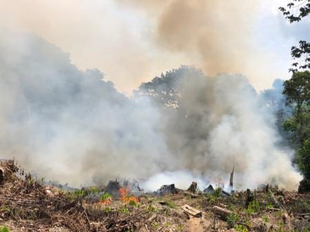 Jahr für Jahr brennen in der Trockenzeit unzählige urwaldzerstörende Feuer, deren Rauch für die Bevökerung weit herum gesundheitsschädigend sind.
