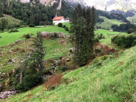 Grossflächige Herbizid-Einzelstockbekämpfung unterhalb Bisisthal, Muotathal SZ