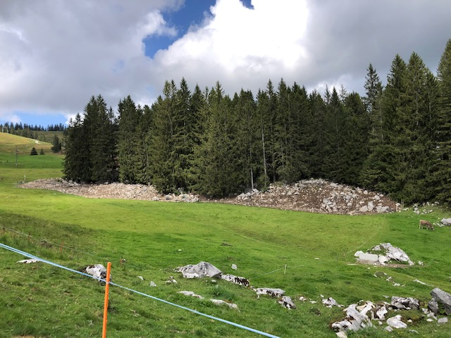 """Die """"Schweineweide"""" mit """"Waldrand-Pufferstreifen"""" oder eher Geröllhalde vom Wanderweg aus fotografiert. Copyright: Tobeltoni"""