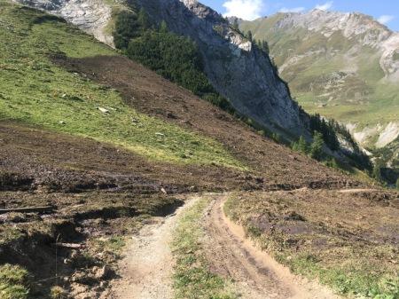 Mit dem Güllefass können die Steilhänge nicht befahren werden, also wird alle Gülle von Wegen aus dort verspritzt, wo man hinkommt. Copyright: Emil Eigenmann