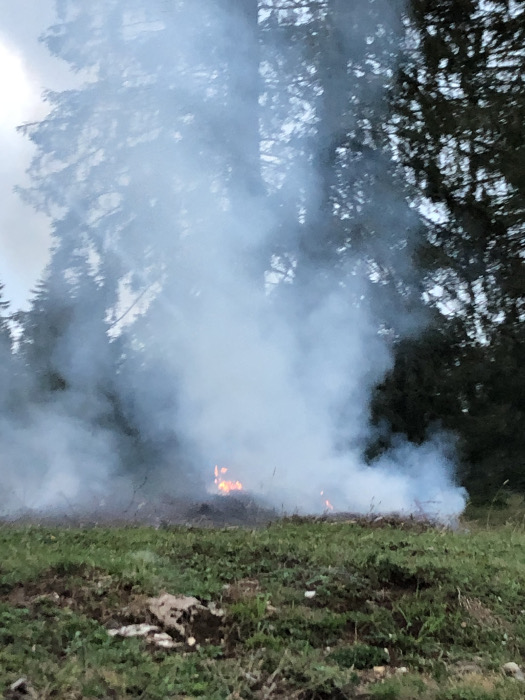 4. Mottfeuer in einer Weide im Berner Jura.