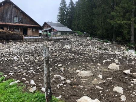 Eine Steinwüste weit und breit, auch am Waldrand. Copyright: Vater Muggli