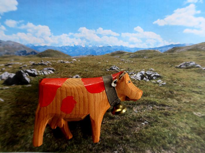 Die Bio-Milchkuh Bella auf einer konventionellen Alp.