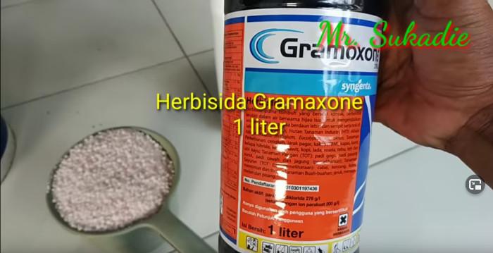 1 Liter Gramaxone von Syngenta (Paraquat)