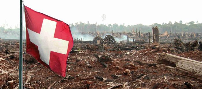 Für Palmölplantagen wird Regenwald vernichtet (© Montage: Flickr/ Wakx & doraemon - CC BY-NC-SA 2.0)