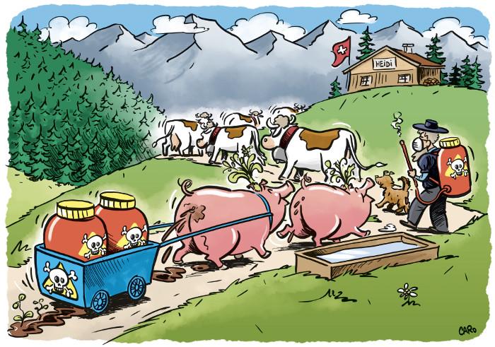 Dieser Cartoon darf gratis weiterverbreitet werden mit folgendem Copyright-Hinweis: © Caroline Rutz. Aus «Trittst im Alpengift daher» https://www.pestizidmythen.ch/#alpengift