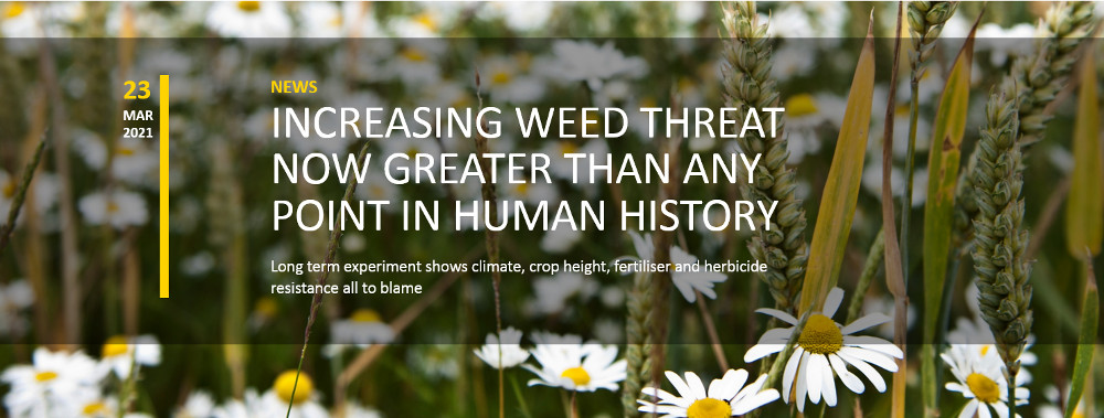Copyright: Rothamsted Research