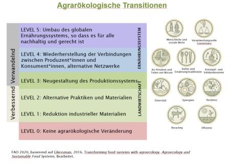 Grafik FAO 2020, bearbeitet.