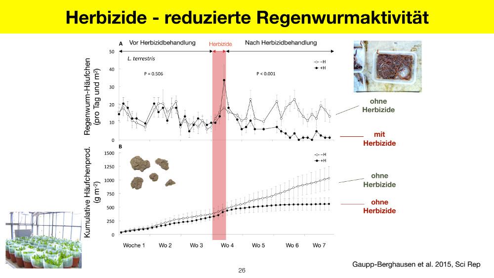 Copyright: Gaupp-Berghausen et al. 2015, https://pubmed.ncbi.nlm.nih.gov/26243044/