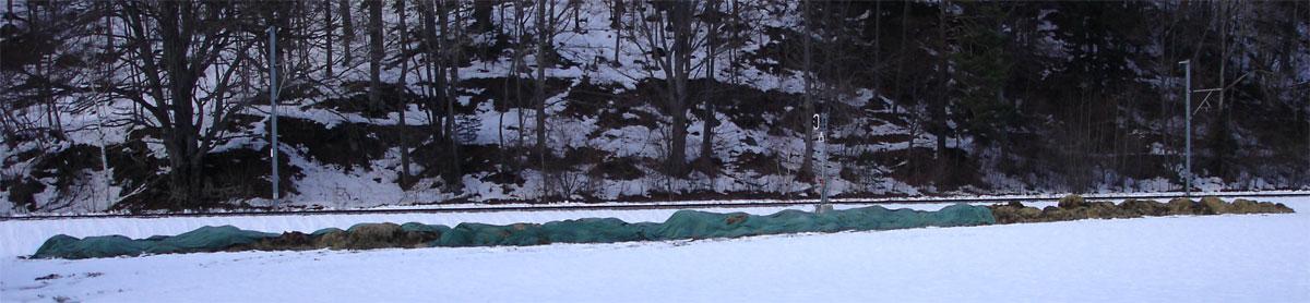 Vom Stall aufs Feld, so wurde bisher häufig mit dem Mist in Graubünden umgegangen. Hier über dem Grundwasser der Rheinebene. Das Amt für Landwirtschaft und Geoinformation hatte das erlaubt, weshalb auch nicht dagegen vorgegangen wurde, bis Heidi kam.