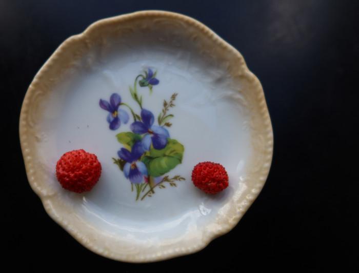Die ersten zwei reifen Wilderdbeeren!